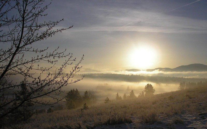 Рассвет весенним утром
