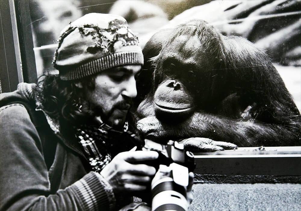 Всемирные картинки прикольные, изображением маши медведя