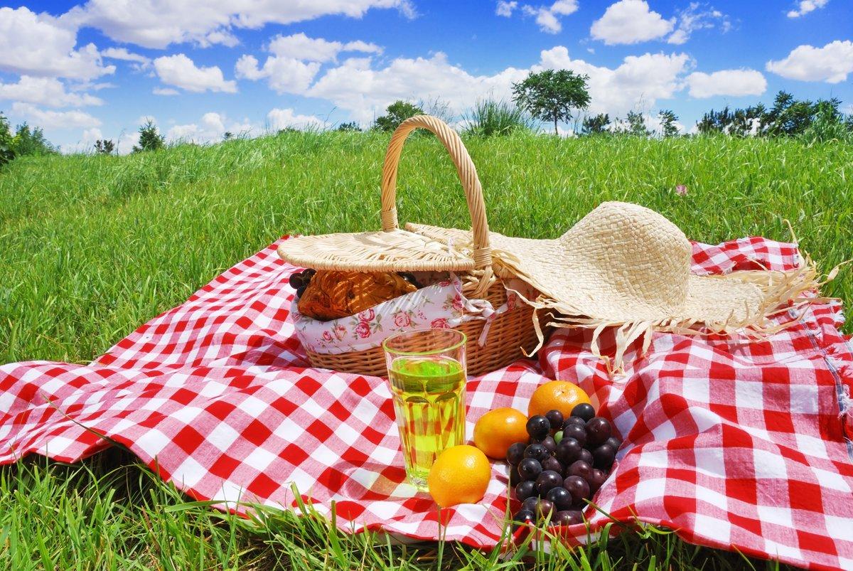 Пикник в картинках