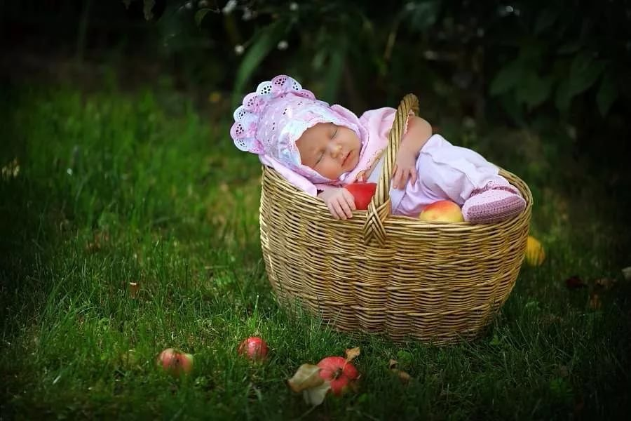 Картинки малыш в корзинке