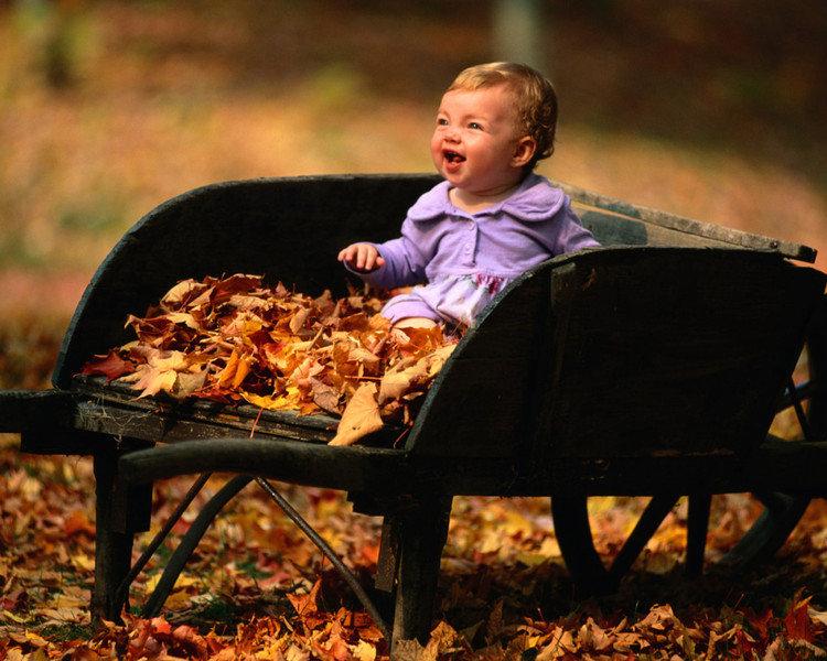 Смешная картинка про детей и осень