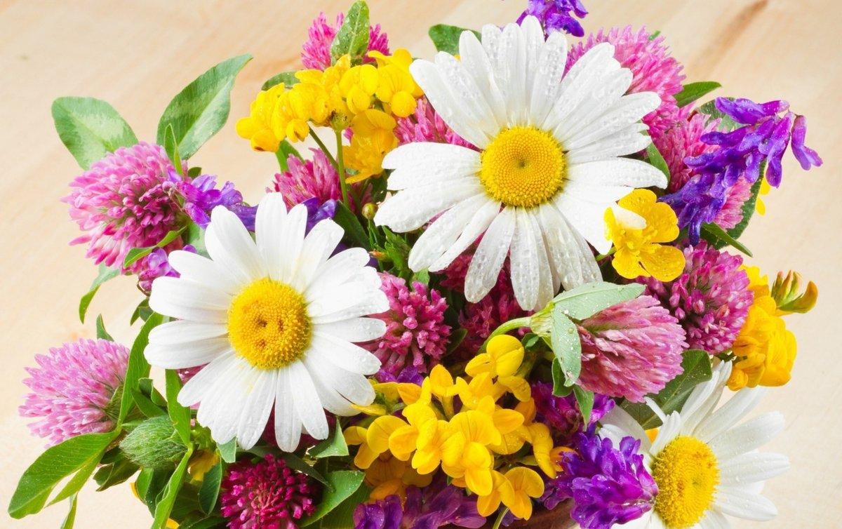 Открытка цветы летние, открытка владимир