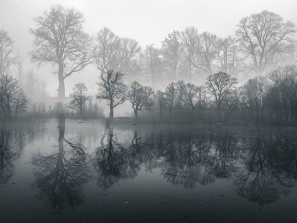 черный туман картинки магазине декатлон продаются