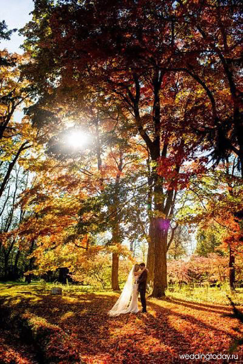 essay autumn day Autumn is the season after summer and before winter in the united states this season is also called fall in the northern hemisphere, it is often said to begin with.