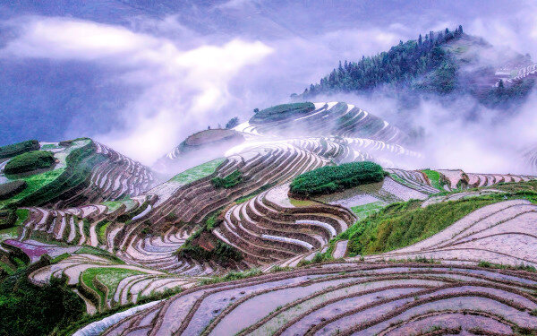 Знаменитые рисовые поля Китая