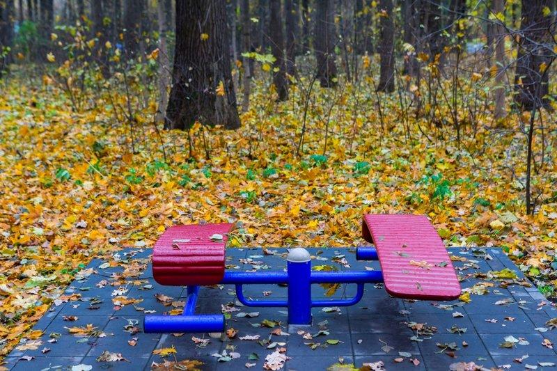 Тренажер платформа в парке