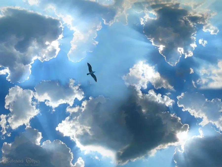 Картинки с надпись хочу на небеса, открытках