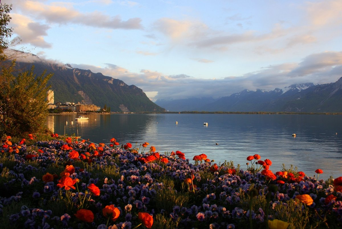 lake geneva enviromental essay contests The mid-point between the demand and supply for that currency is called the mid-market rate and is the real rate which banks use to trade money between themselves.