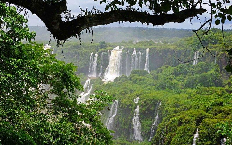 Природа Бразилии великолепно ярко