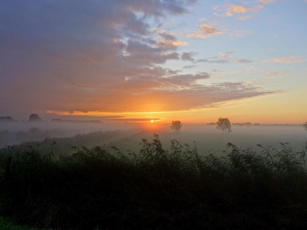 свой картинка солнце село за село день с собою увело тоже теперь подбираю