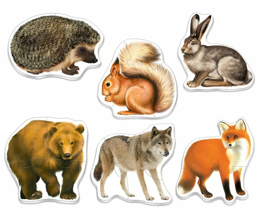 Большие картинки с животными для детей