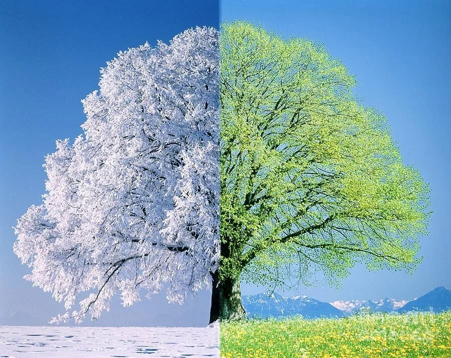 Встреча зимы и весны в картинках