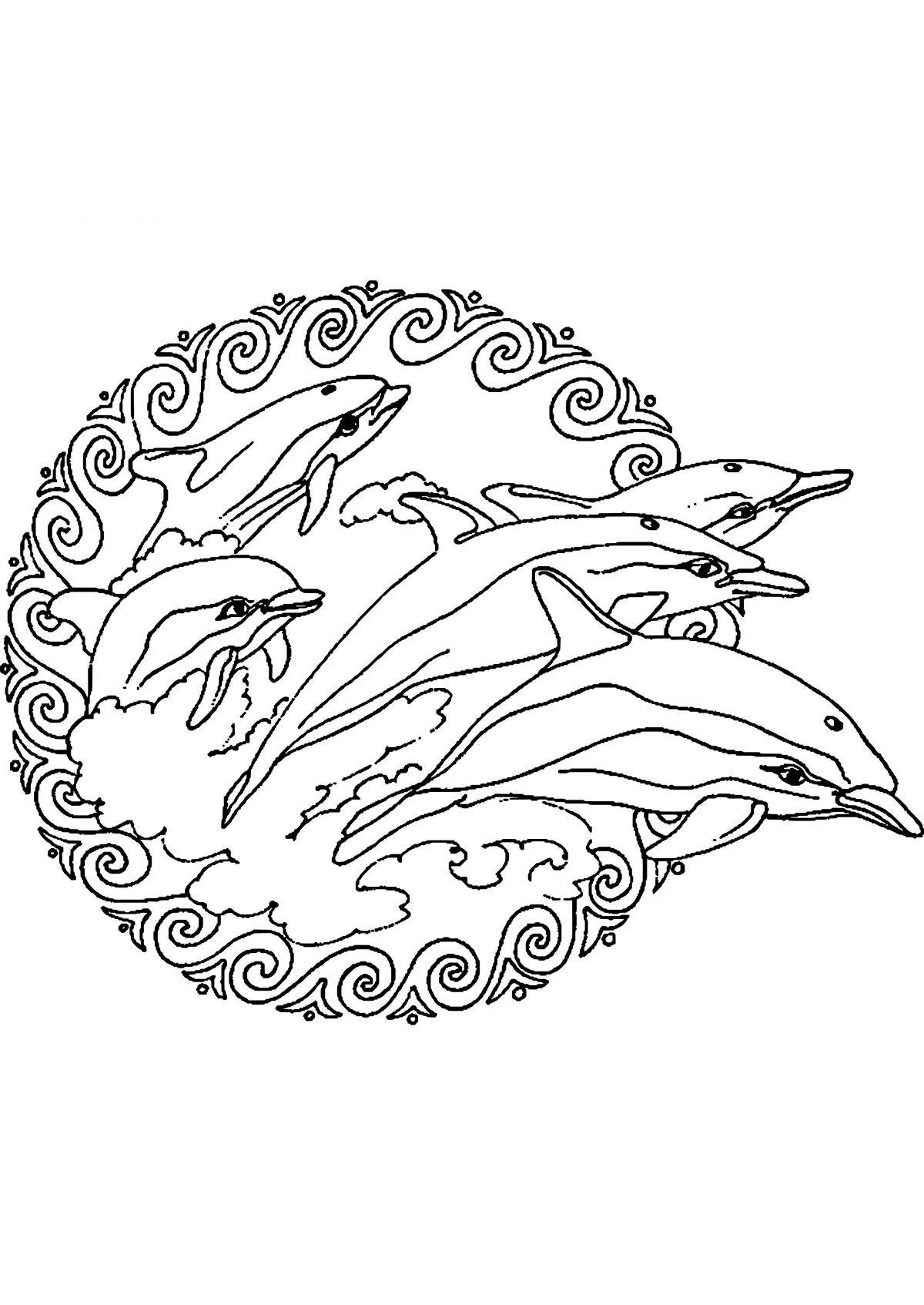 картинки для выжигания дельфин