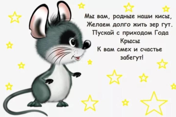 поделитесь прикольное новогоднее поздравление в стихах с годом крысы территории