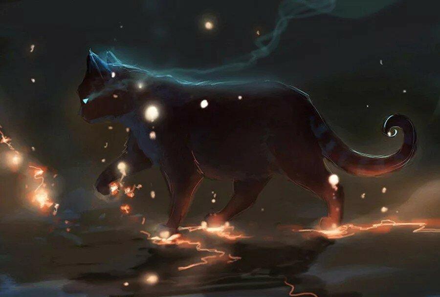Картинки магических котов воителей