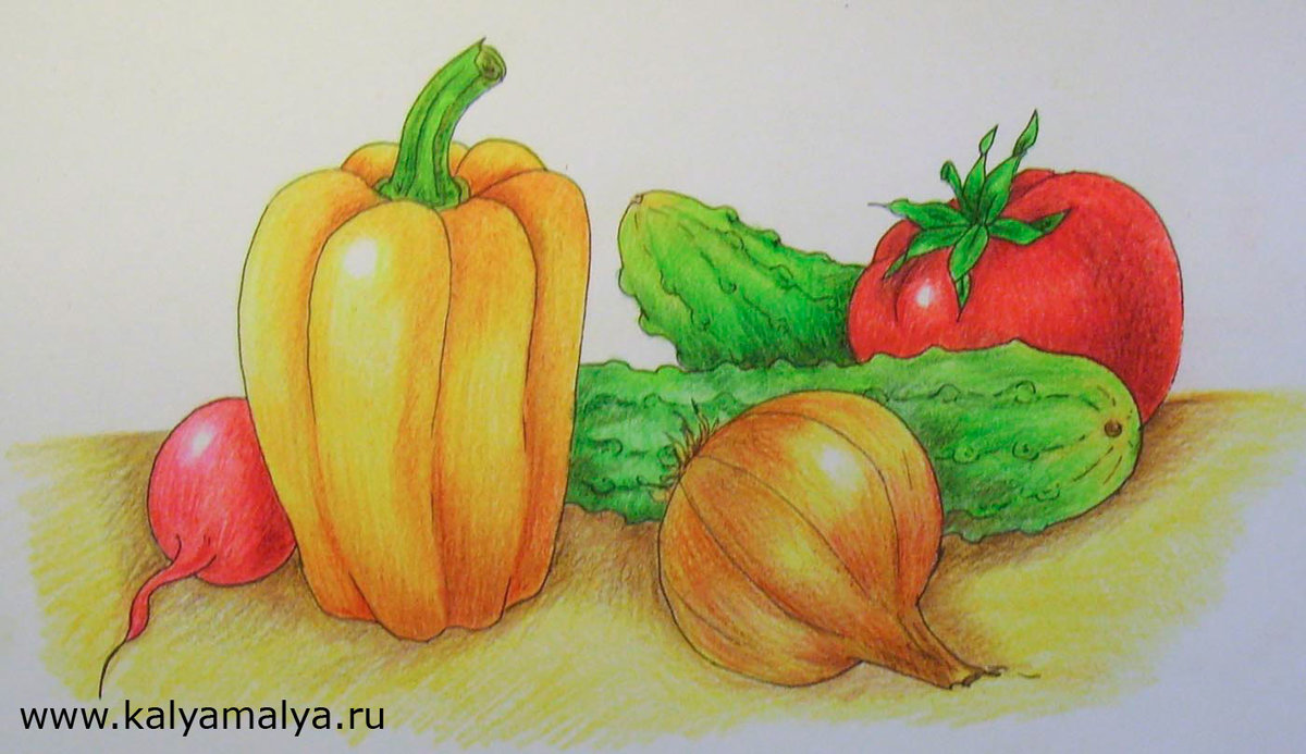 овощи фрукты картинки как рисовать удивляет сочетанием советской