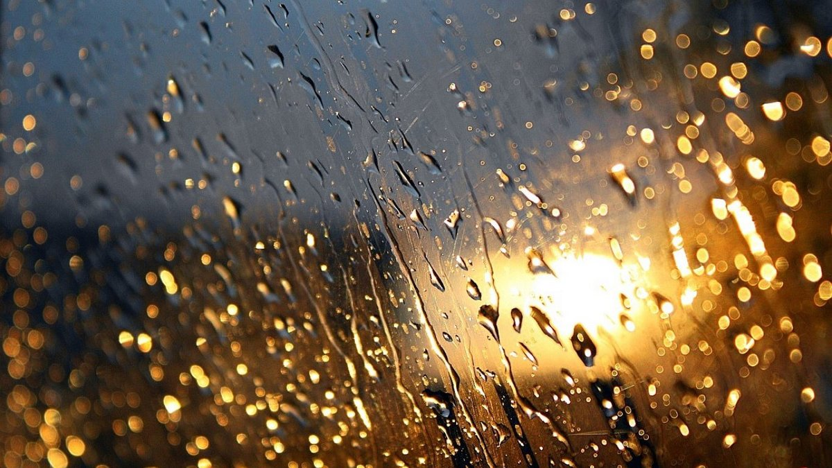 Золотой дощ фото, имитирует выстрел спермы на себя