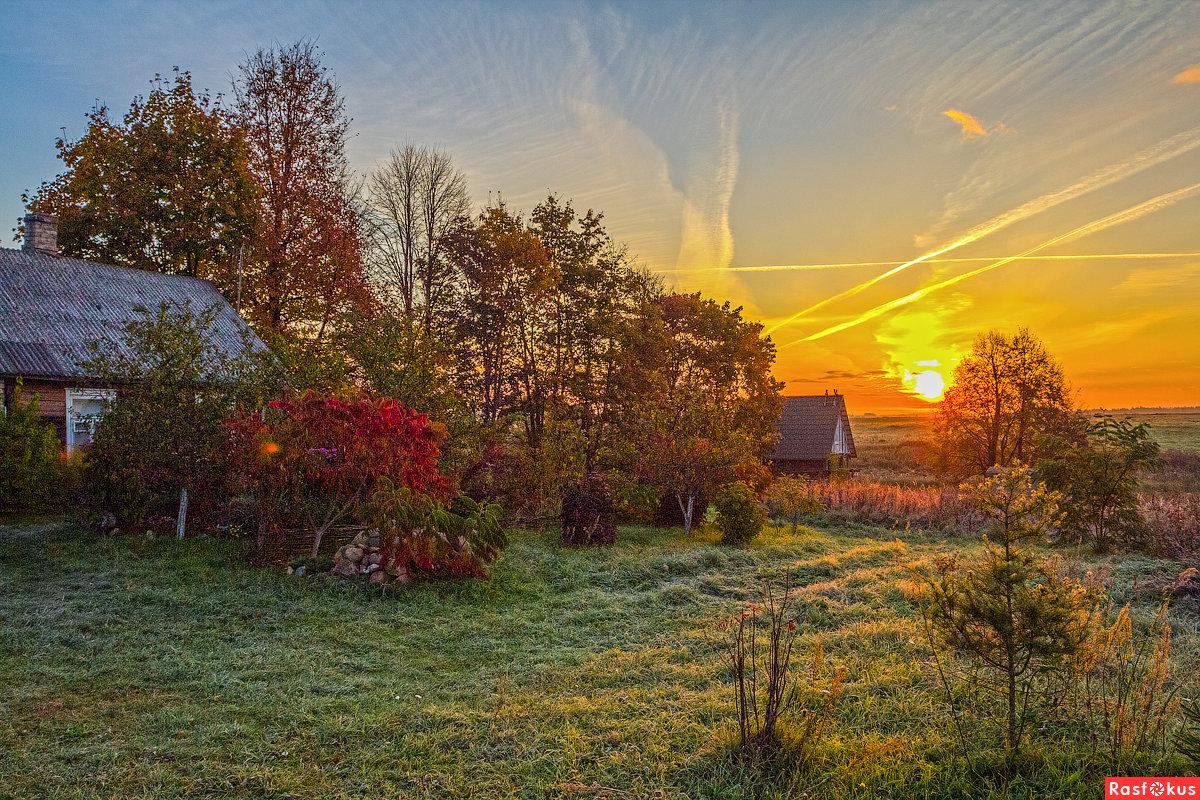 Открытки с новым днем и добрым утром секционные