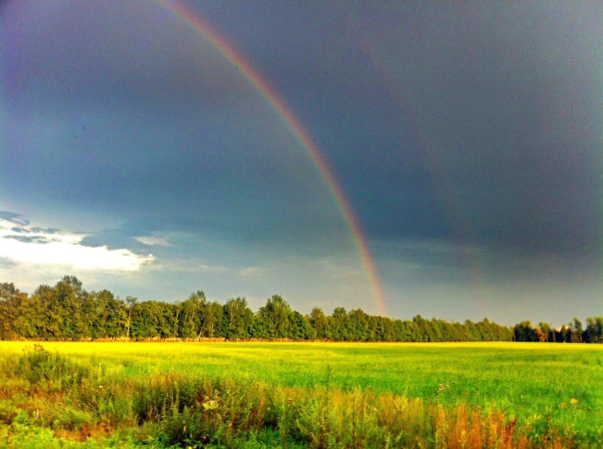 пенится фото радуги после дождя один подвид немецкого