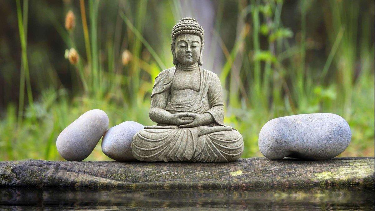 традиции, картинка уроки будды мальчика