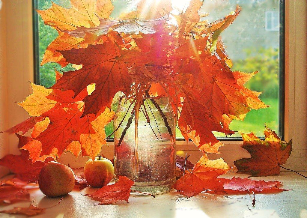 Букет с кленовыми листьями открытка
