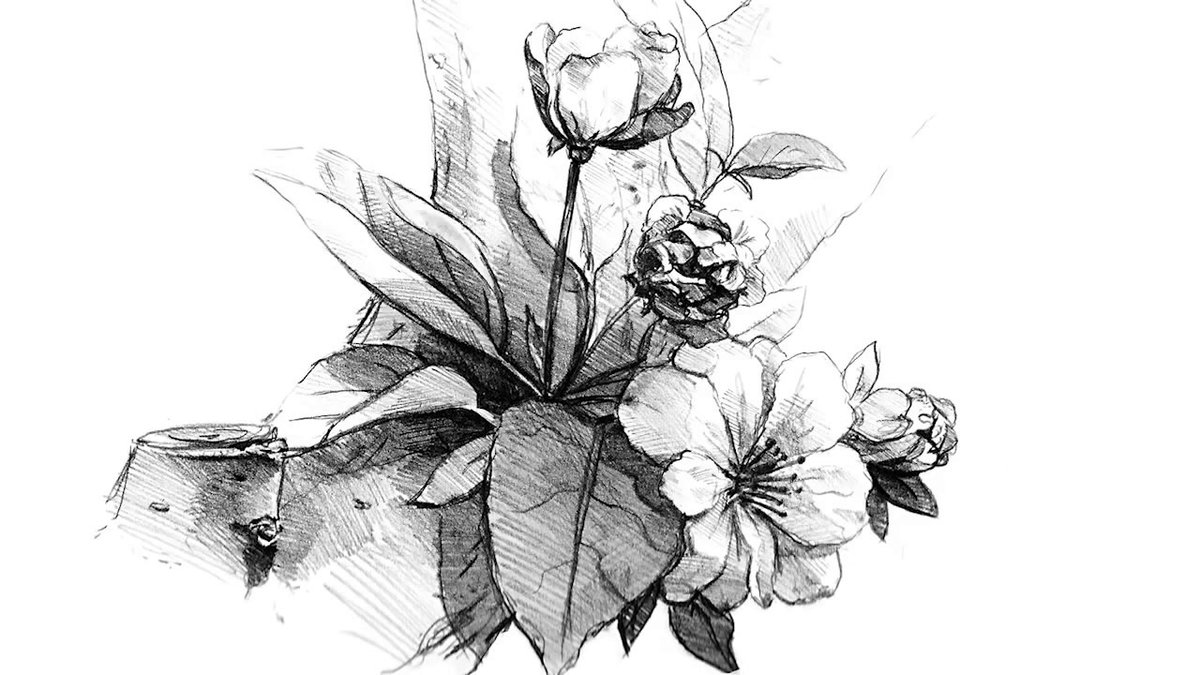 цветочные композиции картинки карандашом брат, души поздравляю