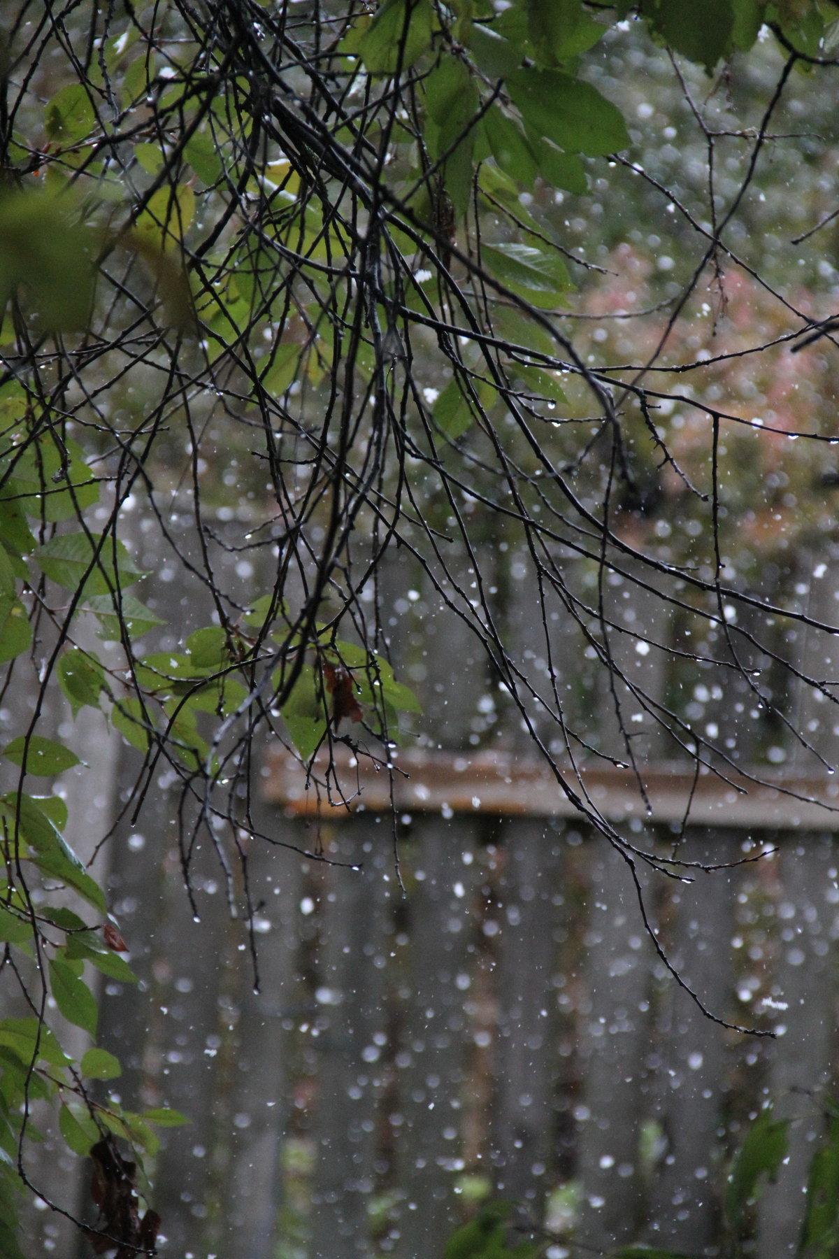 фото с дождливой погодой