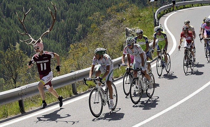 Месяцев, приколы с велосипедистами картинки