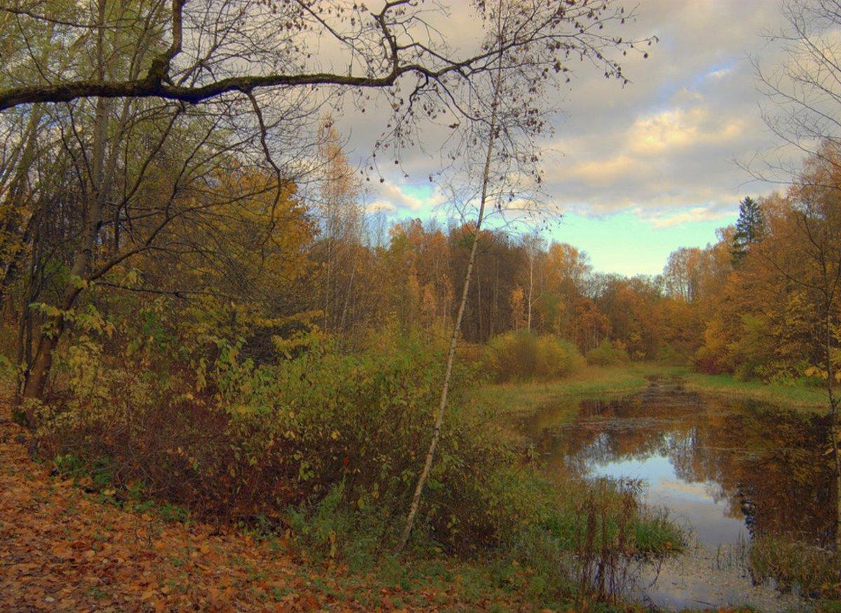Осенняя краса...