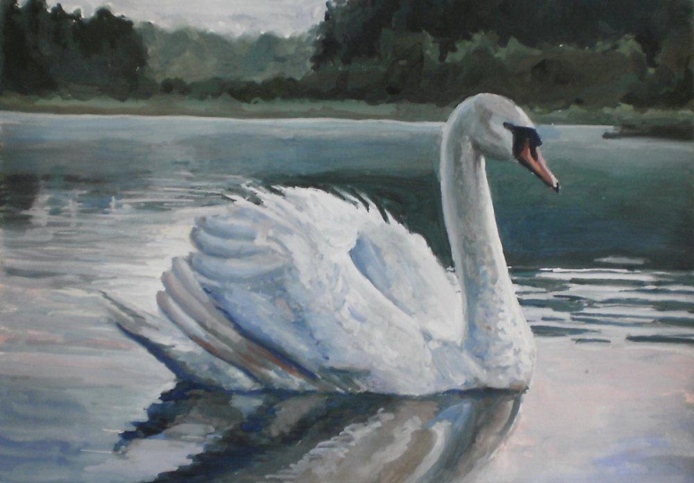 Лебеди картинки акварелью