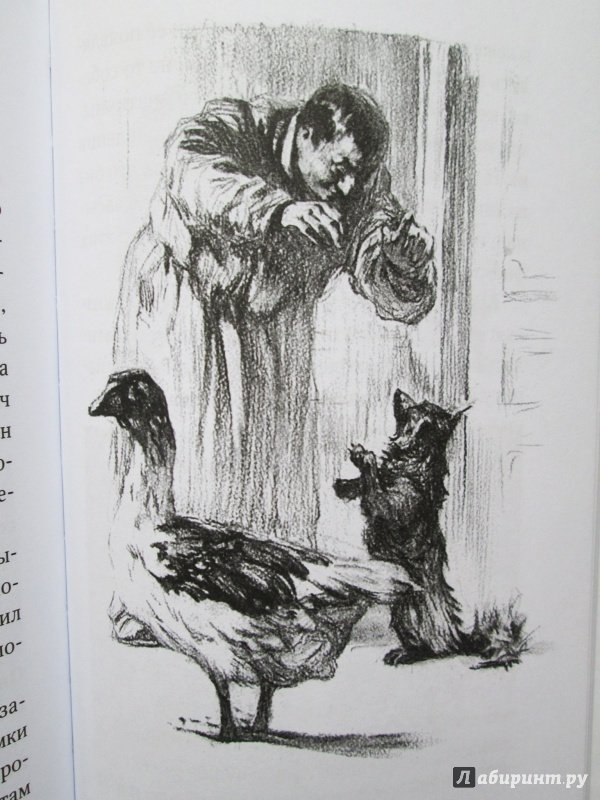 всего рисунки к книге каштанка метелице