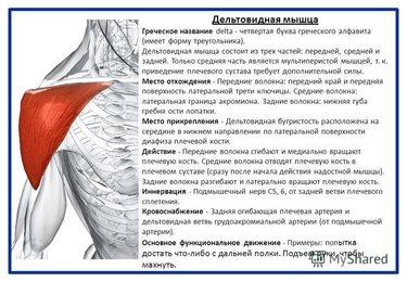 желатин для лечения суставов рецепт