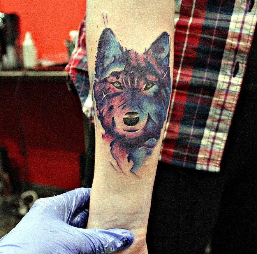 например, начале волк тату акварель фото приложением также