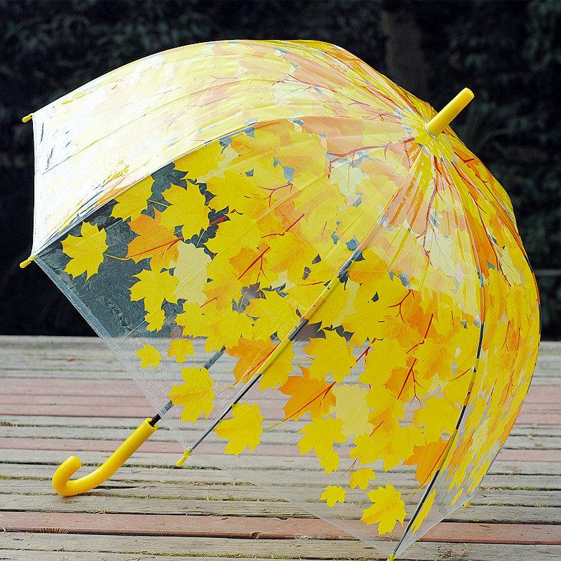 Открытка зонт из осенних листьев на зеленой траве, рамки