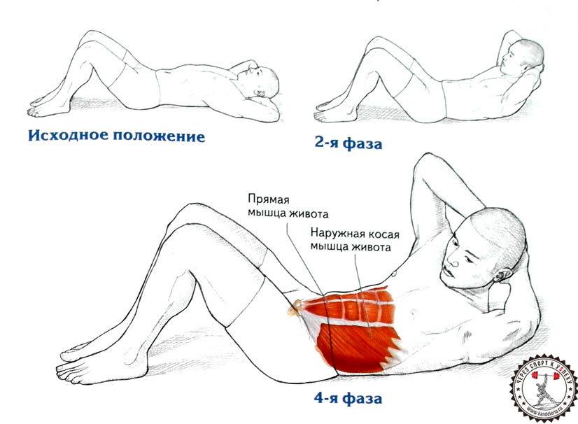 упражнения для нижнего живота в картинках официально почти ровесник