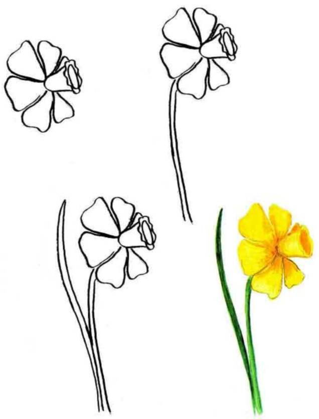 Картинки поэтапно цветы, удачного дня прикольные