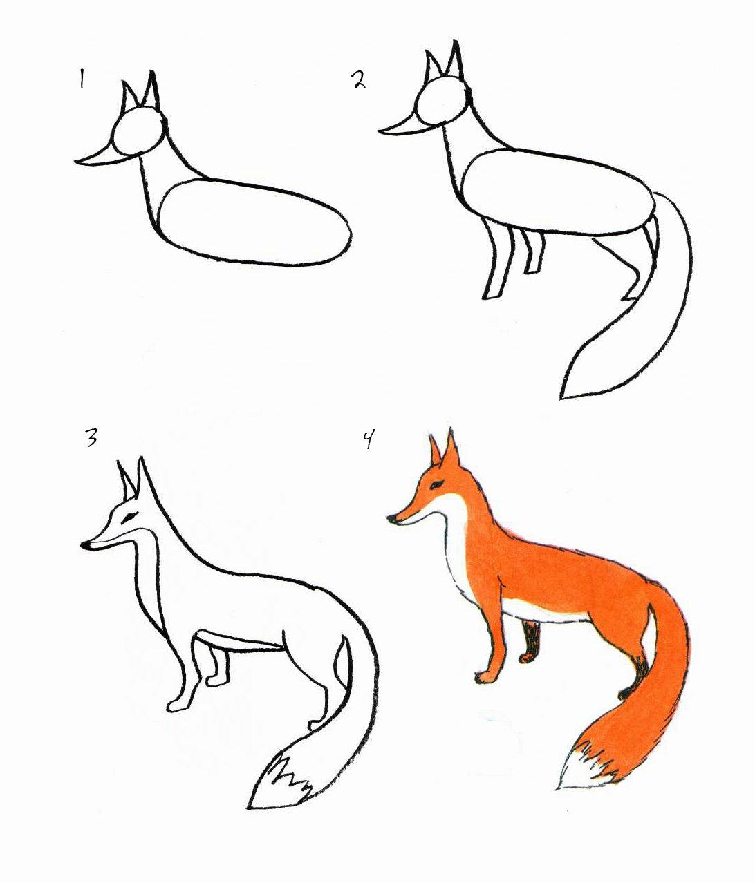 картинки как рисовать животных конца
