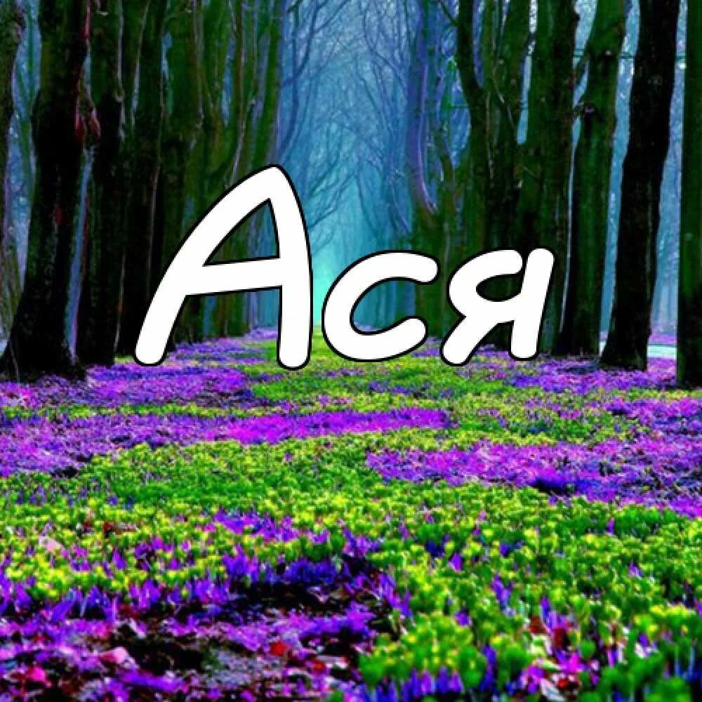 Красивые поздравительные картинки с именем ася емели были