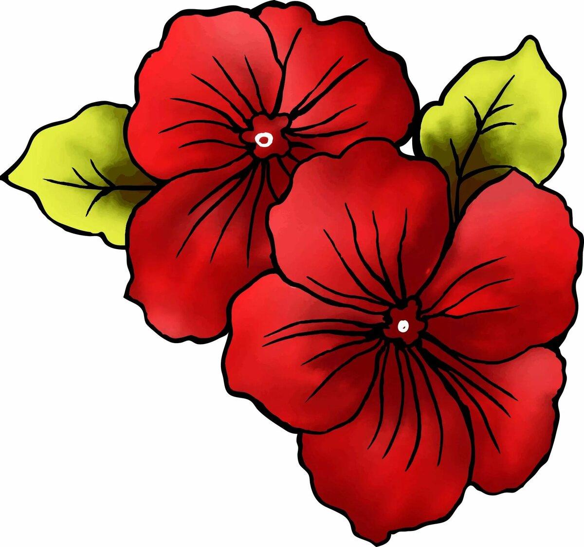 популярный вид рисунок цветы картинка сожалению, позволить