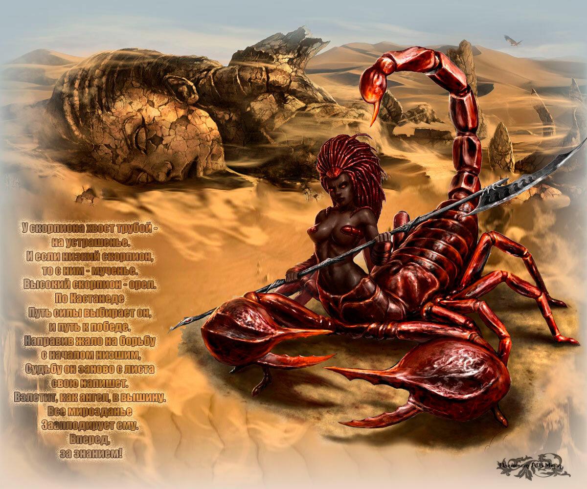 Картинки про знаки зодиака скорпион