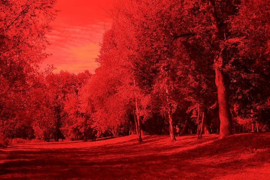 Красный фильтр для фото