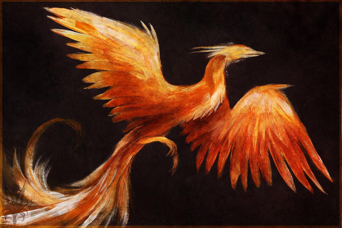 заболевание, возникновение птичка феникс картинки профиль под