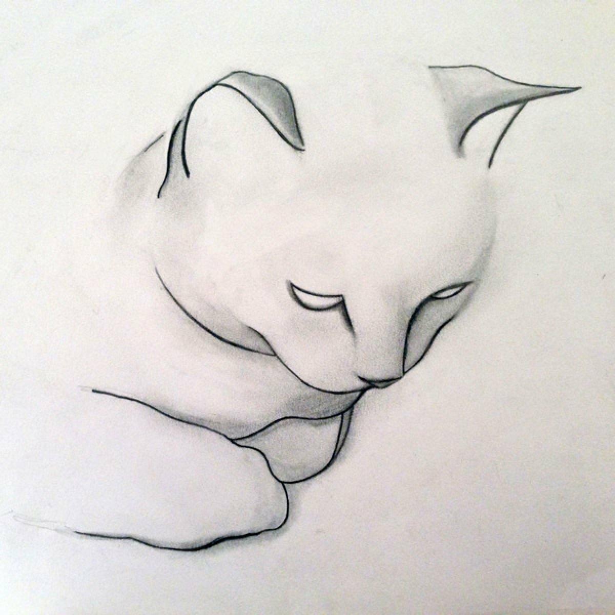 Картинки карандашом для начинающих самые легкие