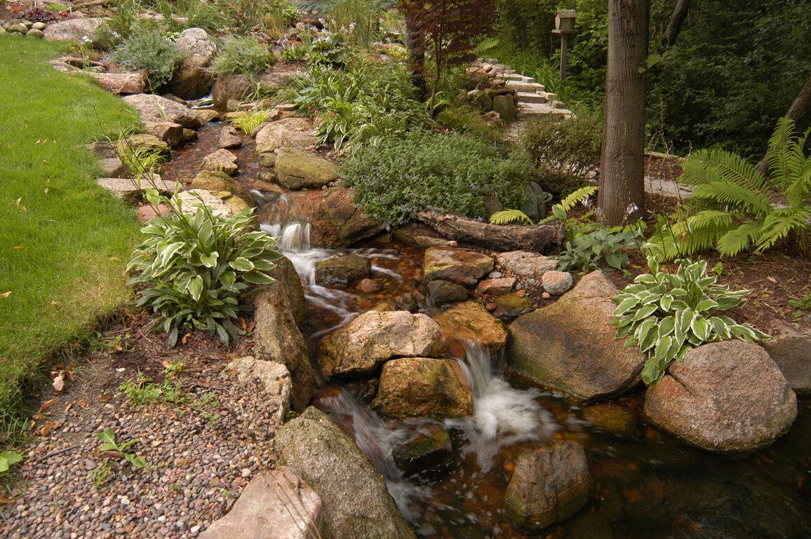 как выглядит сухой ручей в природе фото медико-биологическая