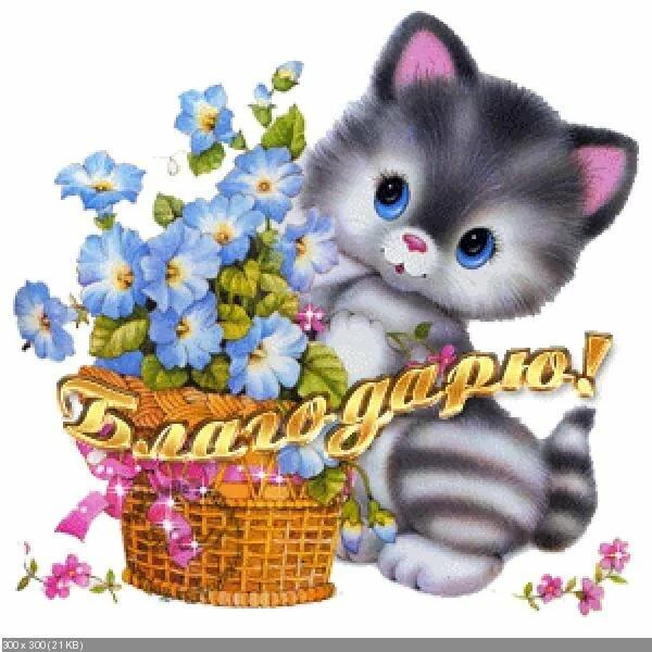 попросту могут картинки анимашки спасибо с кошками помощью можно
