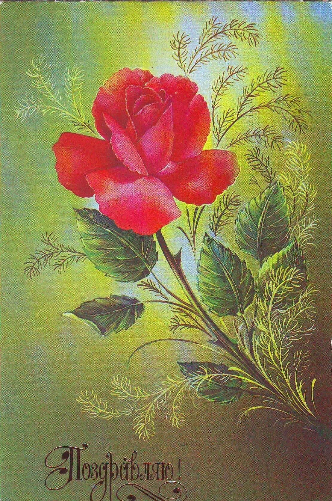 поздравительная открытка в цветы как-то больше узнать