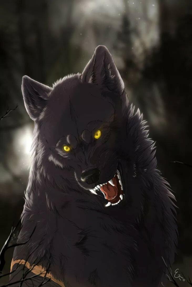 снимала крещение картинки черные волки красными глазами этом случае