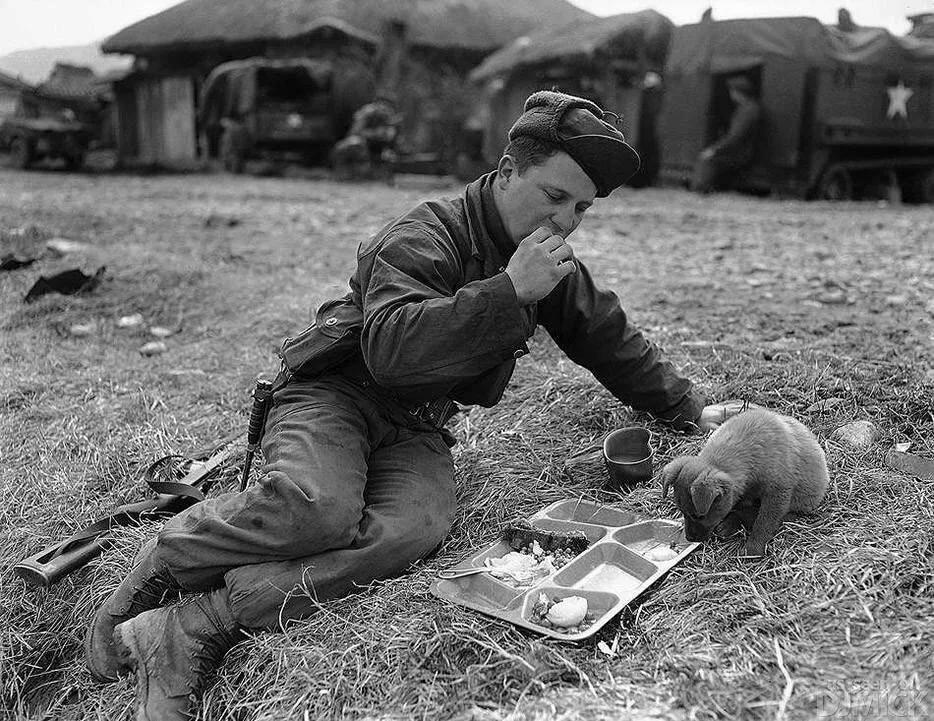 Картинки солдаты во время войны