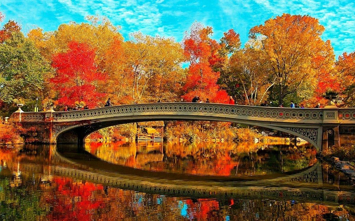 только картинки красивые на тему осень в городе позже выяснилось