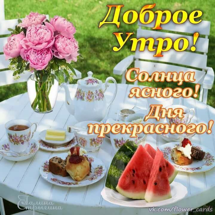 Открытки с добрым утром и прекрасным днем и настроением приготовить роскошное